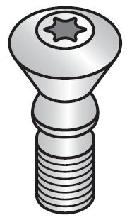 CopyMax®2 Torx Schraube